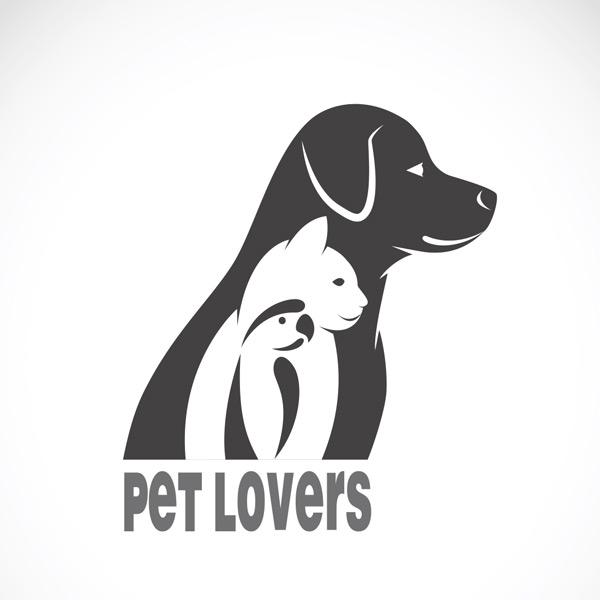 鹦鹉,动物,宠物,插图,设计,卡通,鸟,标志,诊所,艺术,黑色,动物园,剪影