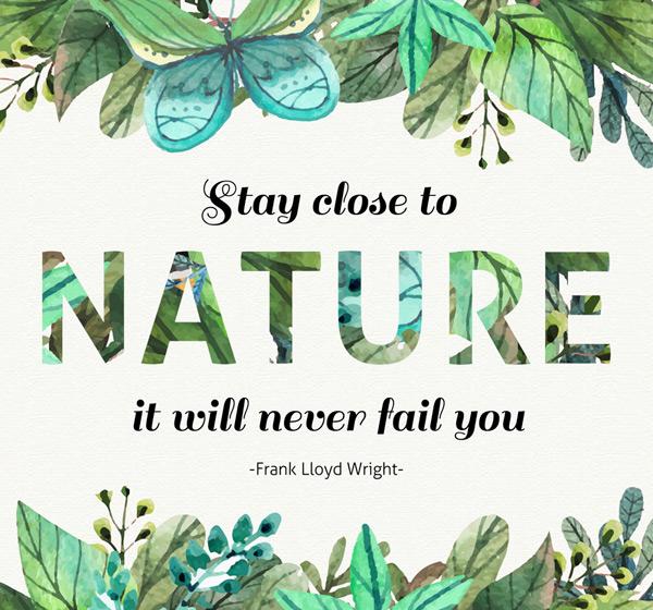 亲近自然艺术字