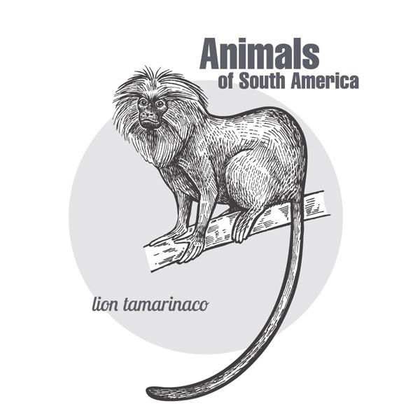 动物戒指手绘效果图