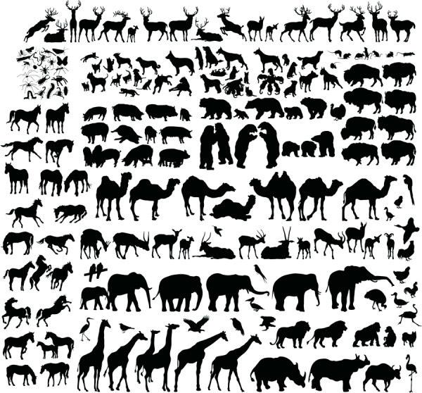 动物剪影矢量_矢量野生动物