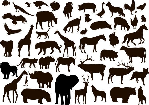 剪影,孔雀,兔子,鸭,鱼,猪,鹅,狗,鸡,猫,牛,鹰,长颈鹿,大象,豹,马,狮子