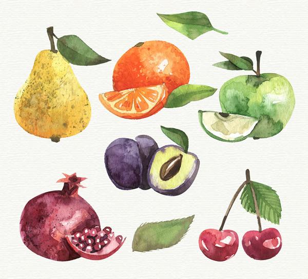 水彩绘水果