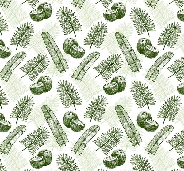 树叶和椰子背景