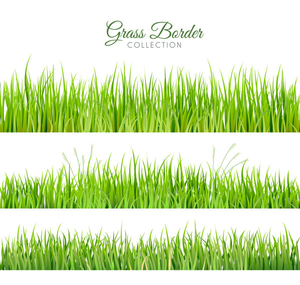 清新绿色草丛
