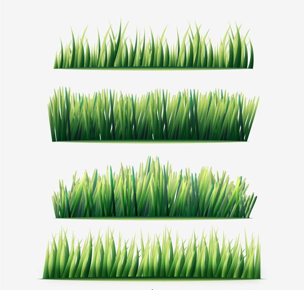 简笔画草丛步骤