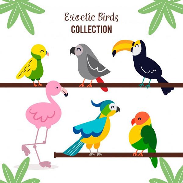 素材分类: 矢量卡通动物所需点数: 0 点 关键词: 可爱卡通鸟类插图