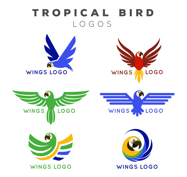 彩色热带鸟标志