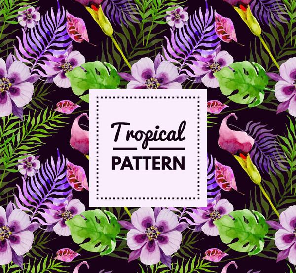 热带花卉无缝背景