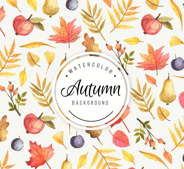 幼儿园中班秋季水果和树叶作品栏