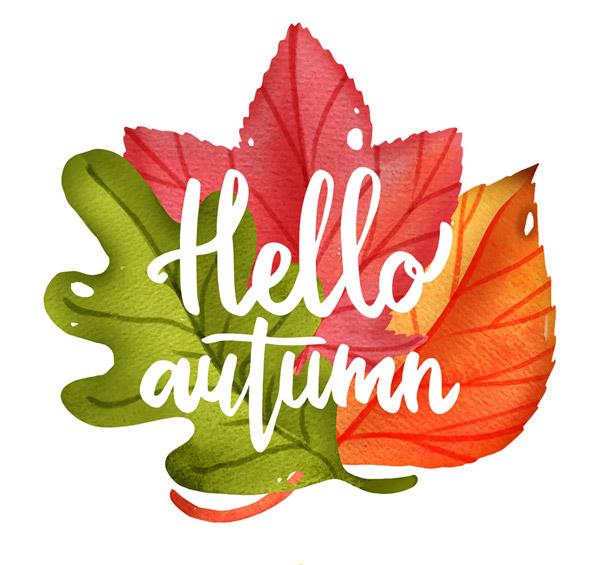 0点关键词:水彩绘秋季版式树叶字树叶模板autumn水彩秋季矢量psd艺术素材v水彩图片