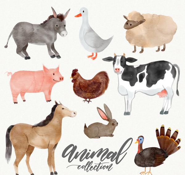 素材分类: 矢量家禽家畜所需点数: 0 点 关键词: 9款水彩绘农场动物