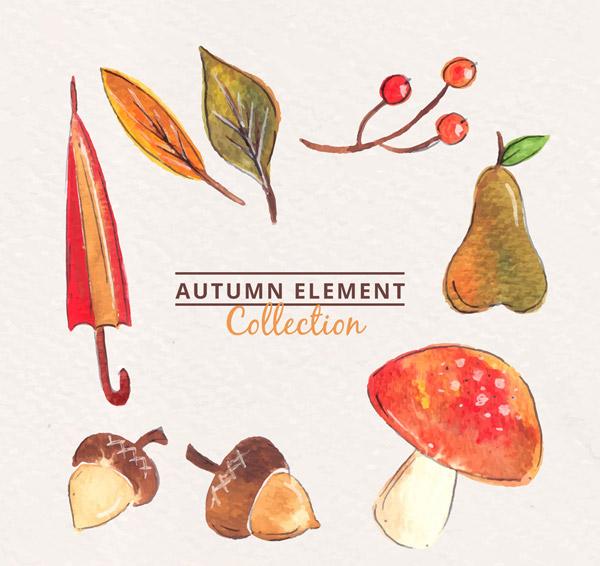 彩绘秋季元素