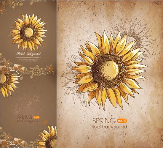 彩绘向阳花,手绘花朵