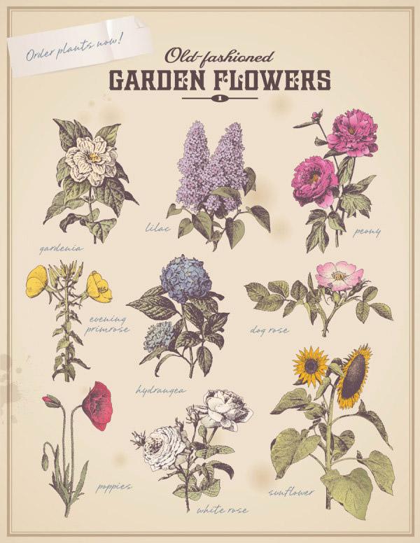 Retro flowers vegetation