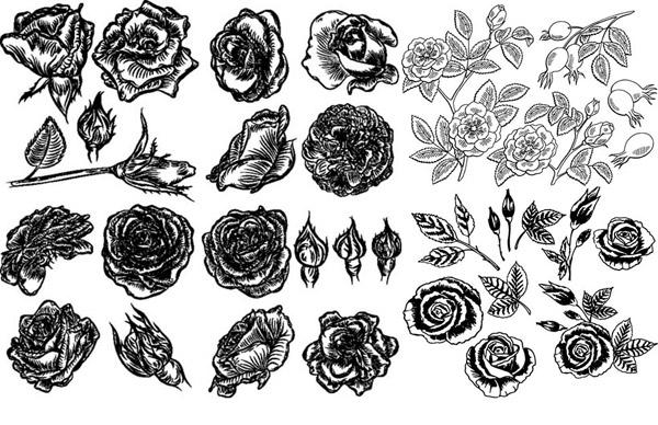 矢量花草树木所需点数: 0 点 关键词: 黑白手绘风花朵等创意设计矢量