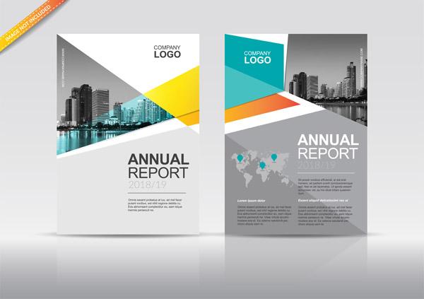 年度报告封面