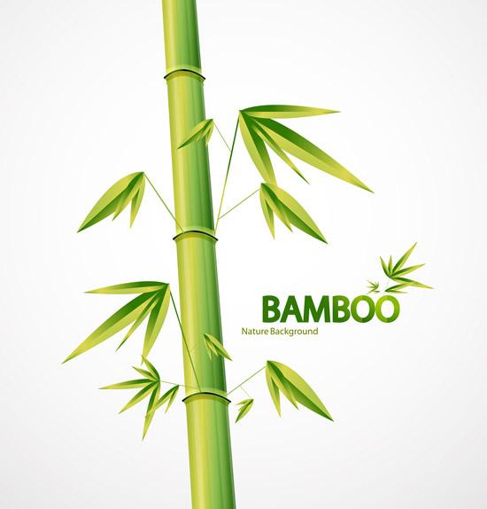 矢量花草树木所需点数: 0 点 关键词: 笔直绿竹矢量素材,笔直竹竿