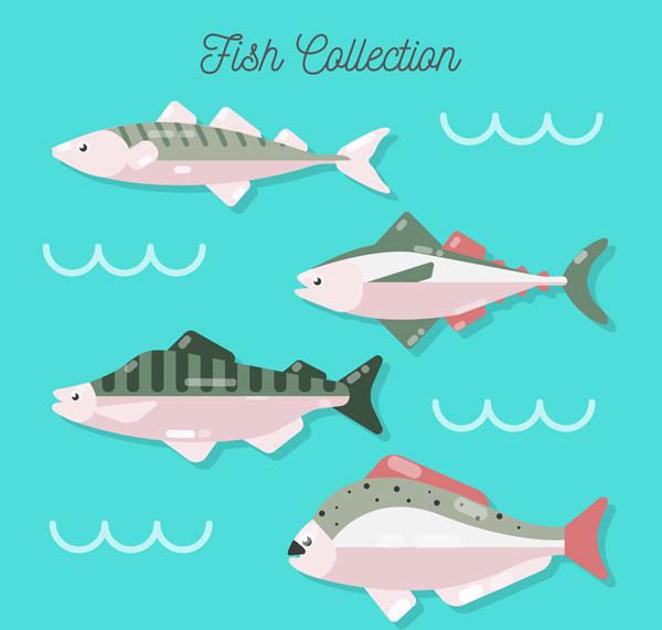 质感鱼类侧面