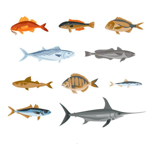 彩绘逼真鱼类