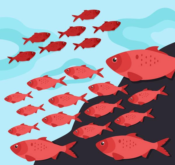 海底红色鱼群