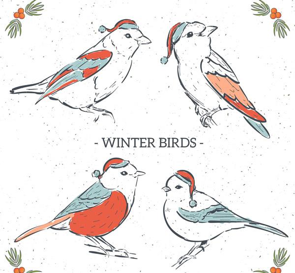 彩绘冬季圣诞鸟类