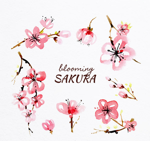 彩绘粉色樱花