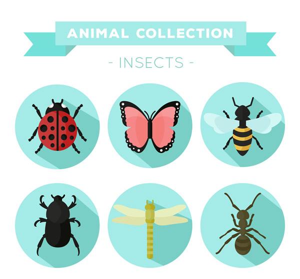 彩色昆虫图标矢量