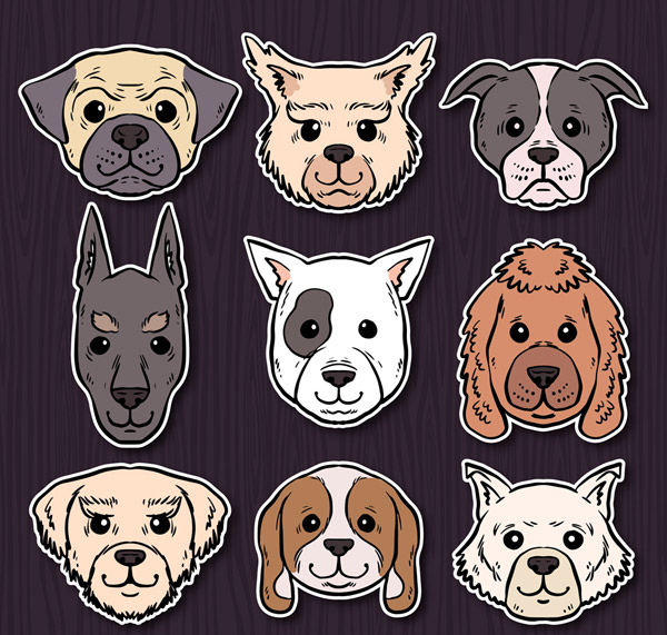 手绘宠物狗头像