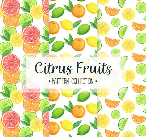 柑橘类水果无缝背景