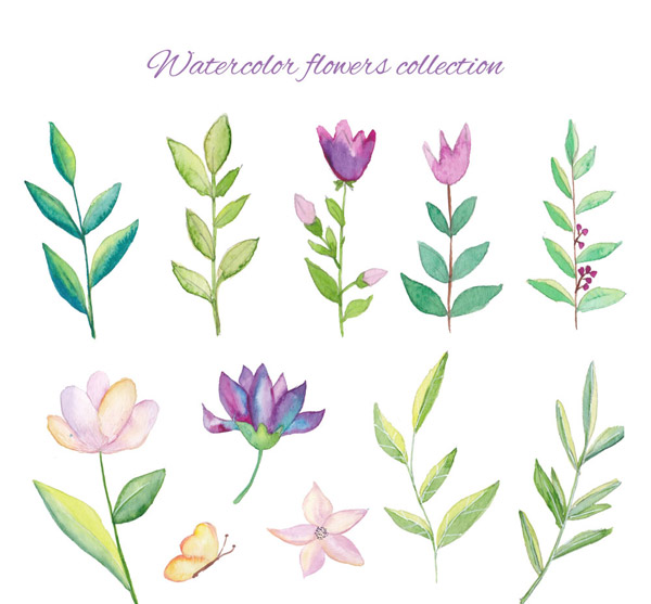 水彩绘花卉和树叶
