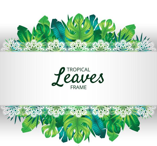 逼真热带树叶框架
