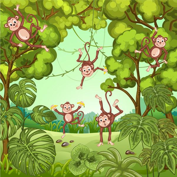 丛林里的猴子