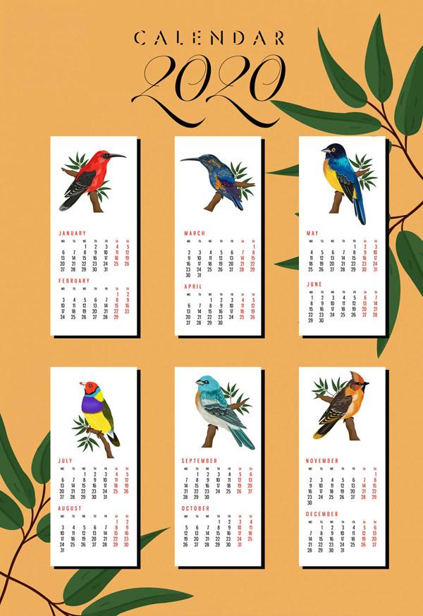 2020鸟类年历卡片