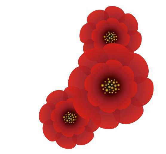 Red flowers vector graphic