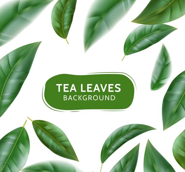 绿色茶叶无缝背景矢量素材,新鲜,绿色,茶叶,无缝背景,叶子,矢量图,ai