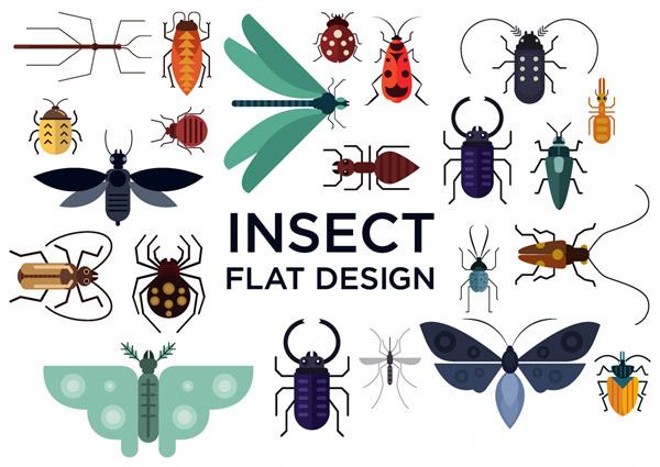 创意昆虫设计