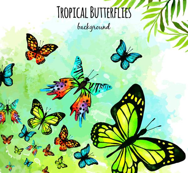 彩绘美丽蝴蝶群