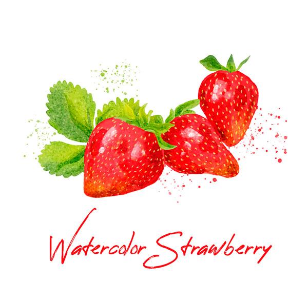 水彩�L美味草莓