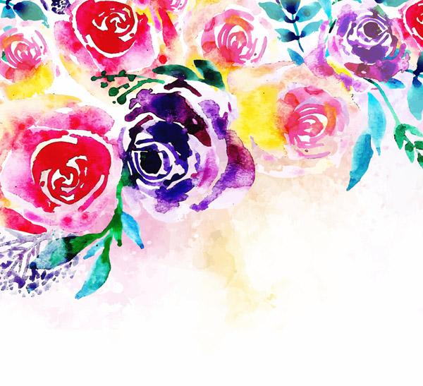 多种颜色玫瑰花