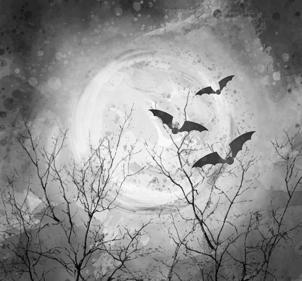 夜晚枯树蝙蝠风景