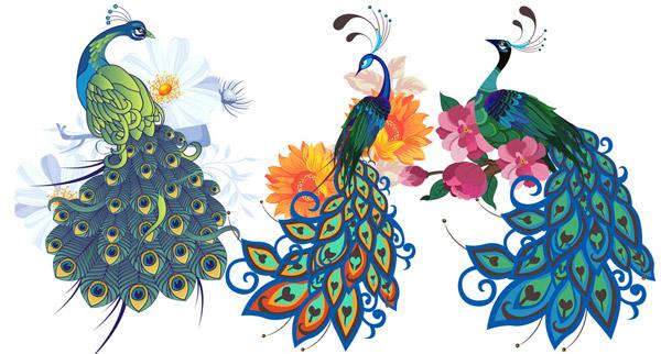 卡通花卉孔雀