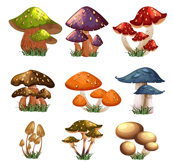 卡通蘑菇设计