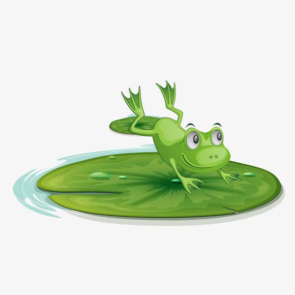 跳到荷叶的青蛙