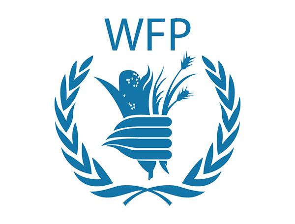 联合国世界粮食计划署标志