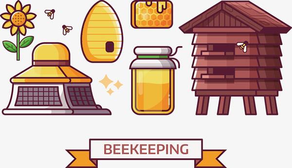 蜂蜜和蜂房矢量图