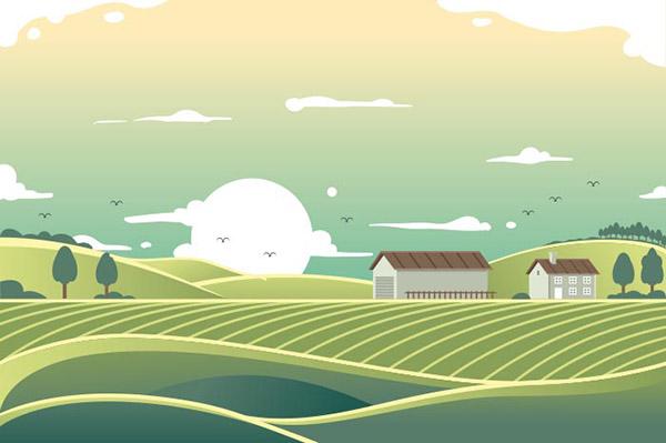 平坦牧场景观