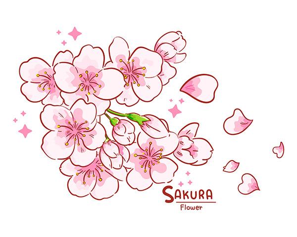 手绘樱花插画