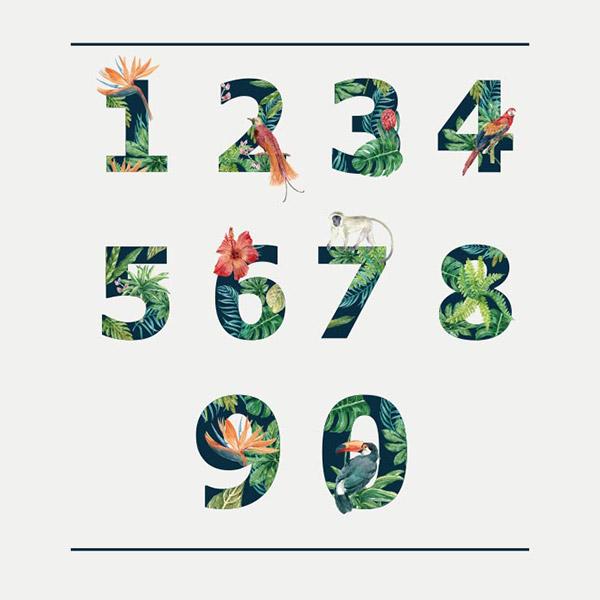 热带数字设计矢量