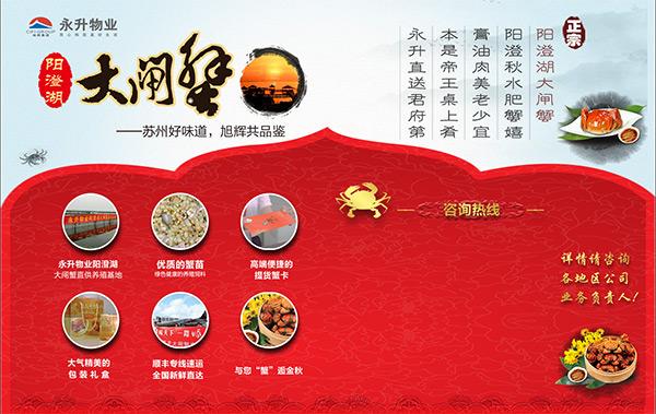 阳澄湖大闸蟹宣传展板设计psd素材