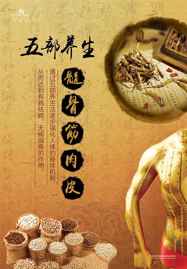 中医养生宣传资料,中医宣传海报,海报设计,海报素材,广告设计模板,psd
